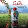 Gesundheit und Vitalität mit GoChi-Juice